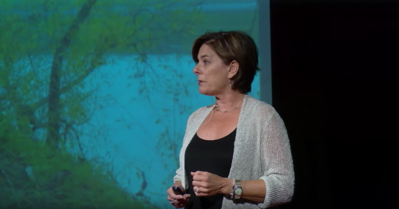 Dr. Kate Transchel giving a Ted Talk on human trafficking